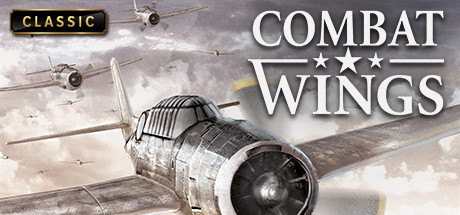 Combat Wings PC Game Free Download