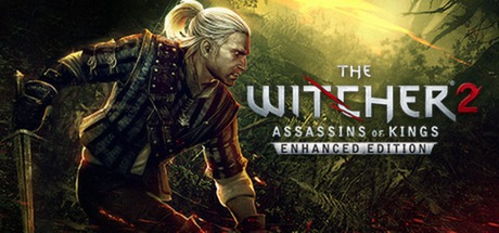The Witcher 2 PC Game Free Download